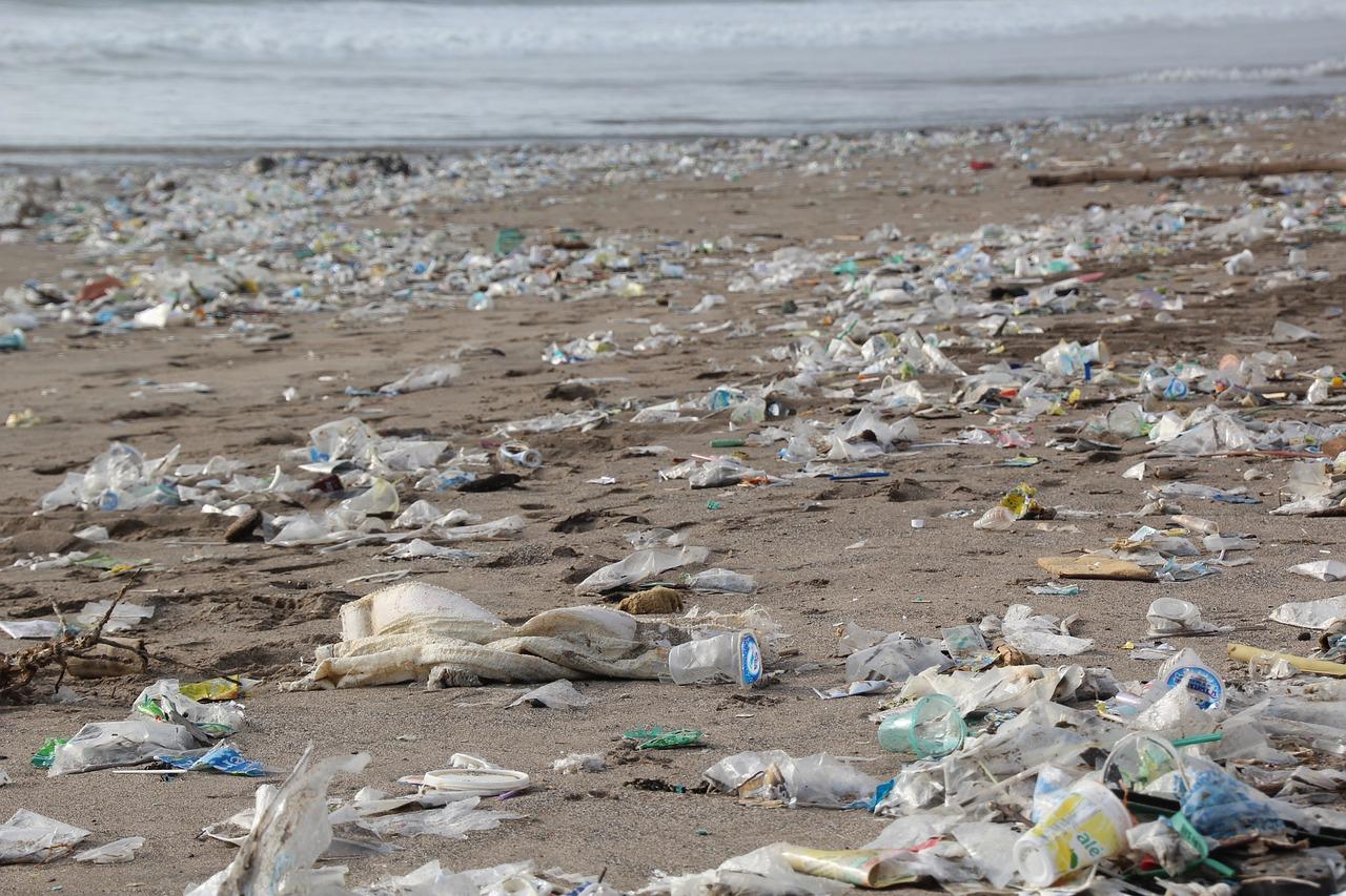 oceanconservancy.org:.jpg