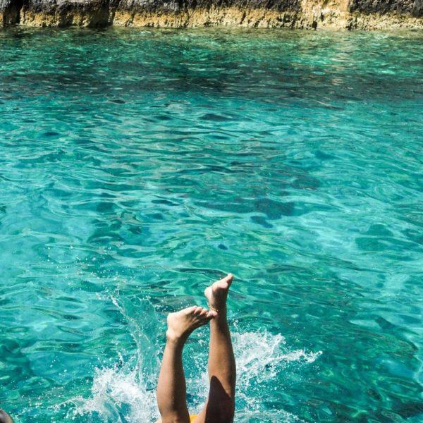 The Major Benefits of Sea Moss